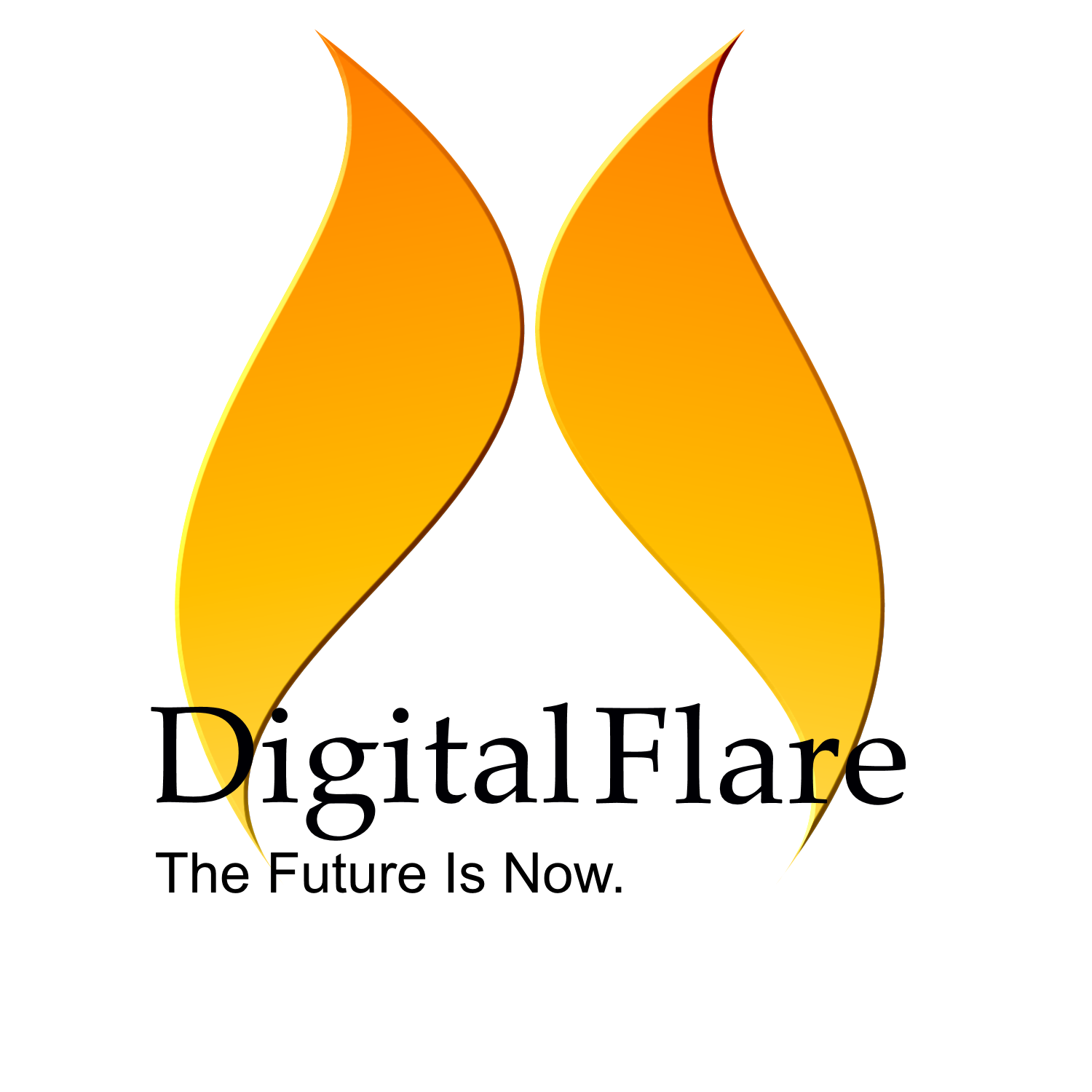 https://www.digitalflare.co.nz/